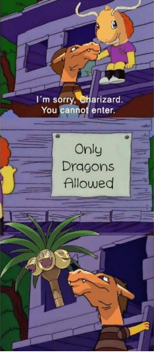 im-sorry-charizard-you-cannot-enter-only-dragons-allowed-13532644